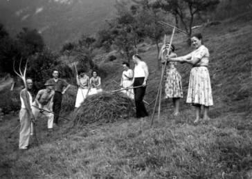 L'herbe, les foins et le regain à Passy, © 2017 Culture, Histoire et Patrimoine de Passy